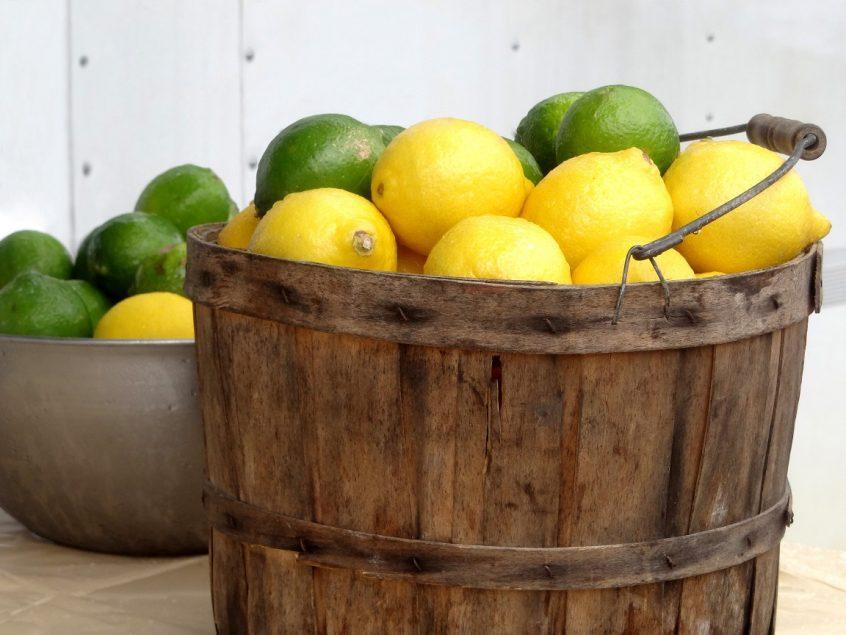 bucket lemons limes - smaller.jpg